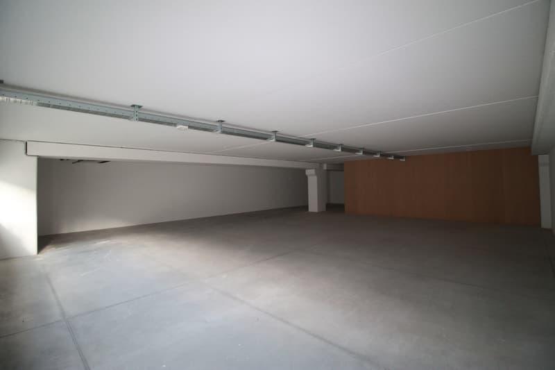 Bedano-ampi e moderni spazi industriali Centro Bedart (4)