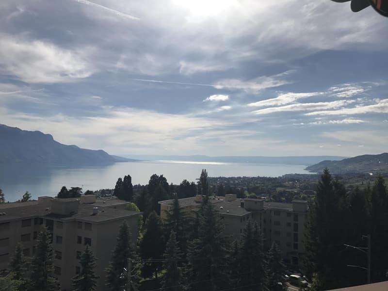Magnifique vue sur le lac