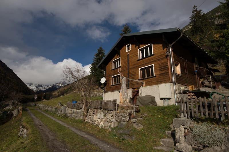 Haus-Husen