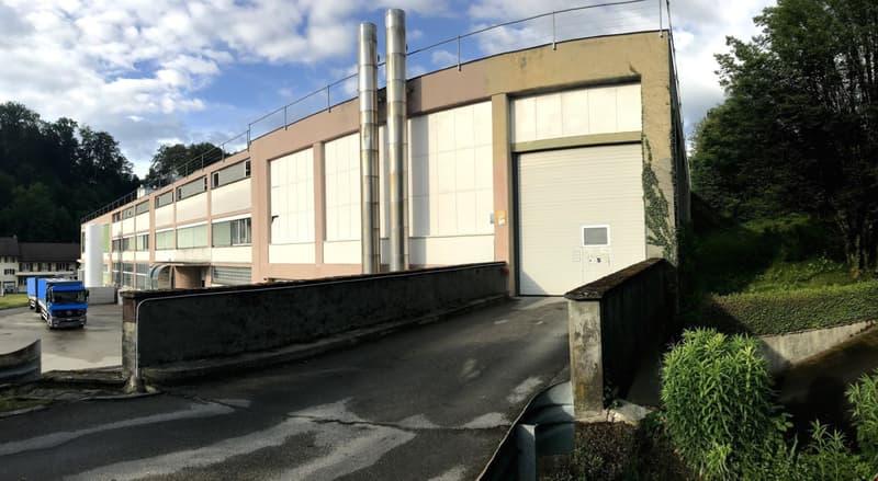 Vaud artisanal et industriel / Handwerker & Industriegelände  14'000m2