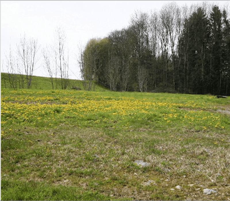 Terrain artisanal à 14 mn de Lausanne