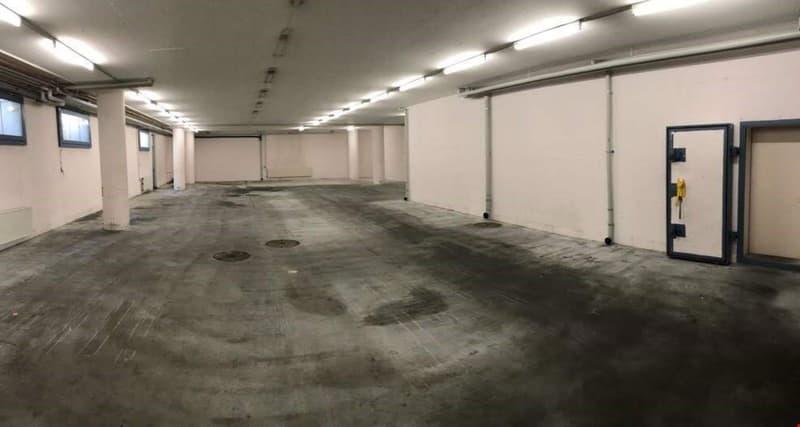Locaux commerciaux: showroom, bureau, atelier, artisanal 800 m2 métro