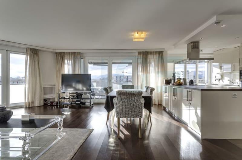 Magnifique appartement attique en duplex aux prestations luxueuses