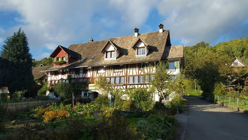 WG Mitbewohner/in gesucht für wunderschöne Wohnung in altem Riegelhaus im Grünen