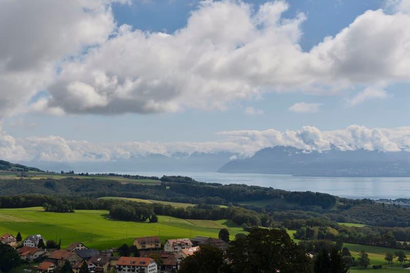 Vue imprenable sur le Lac et les Alpes