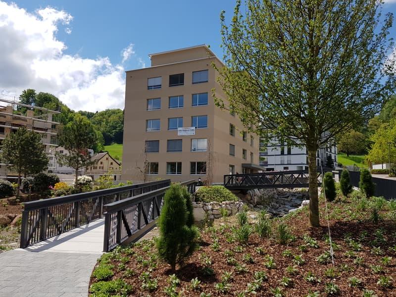 Helle & moderne Wohnung um steuergünstigen Wollerau (1)