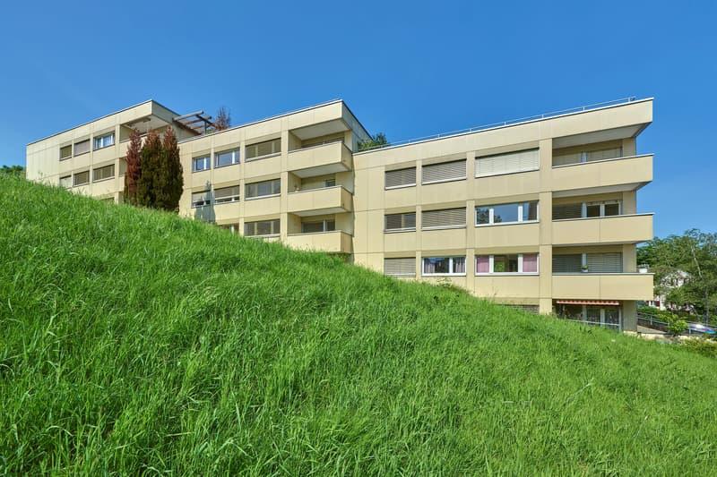 Gemütliche Stadtwohnung im Schönbühlquartier! (1)