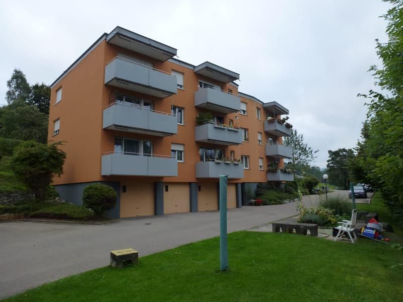 Neu renovierte 4-Zimmerwohnung mit Alpenblick