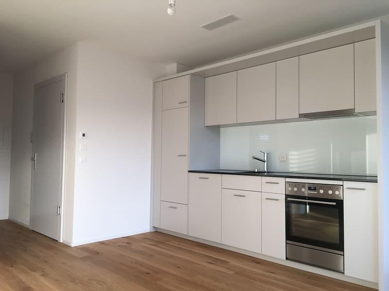 NEUBAU - letzte Wohnung zu vermieten - 2 1/2-Zimmerwohnung im Hochparterre rechts