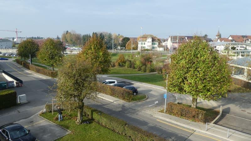 Cheseaux-sur-Lausanne, grand 6.5 pièces lumineux