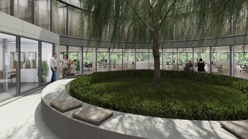 Topmoderne Büroräumlichkeiten im Geschäftszentrum HALTEN (3)