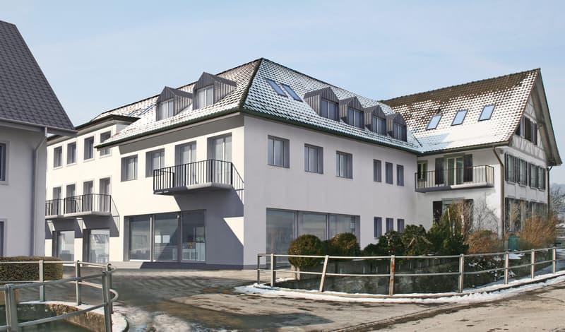 Loft mit 3 Balkonen mitten in Birmensdorf