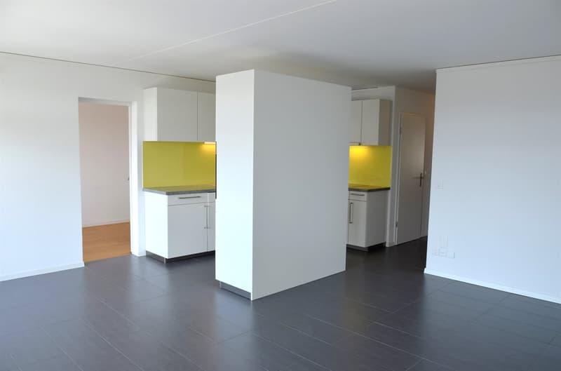 Schöne renovierte 4.5-Zimmer-Wohnung zu vermieten
