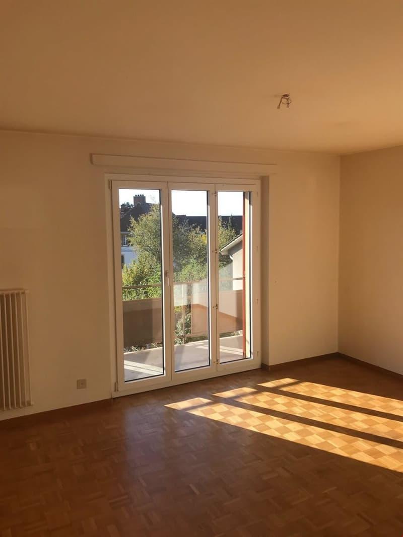 Appartement de 3 pièces, proche de toutes les commodités (1)