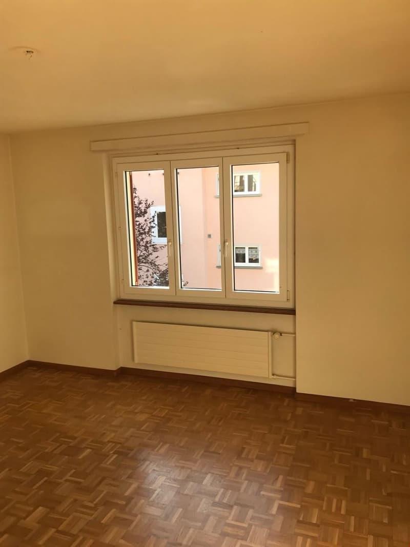 Appartement de 3 pièces, proche de toutes les commodités (3)