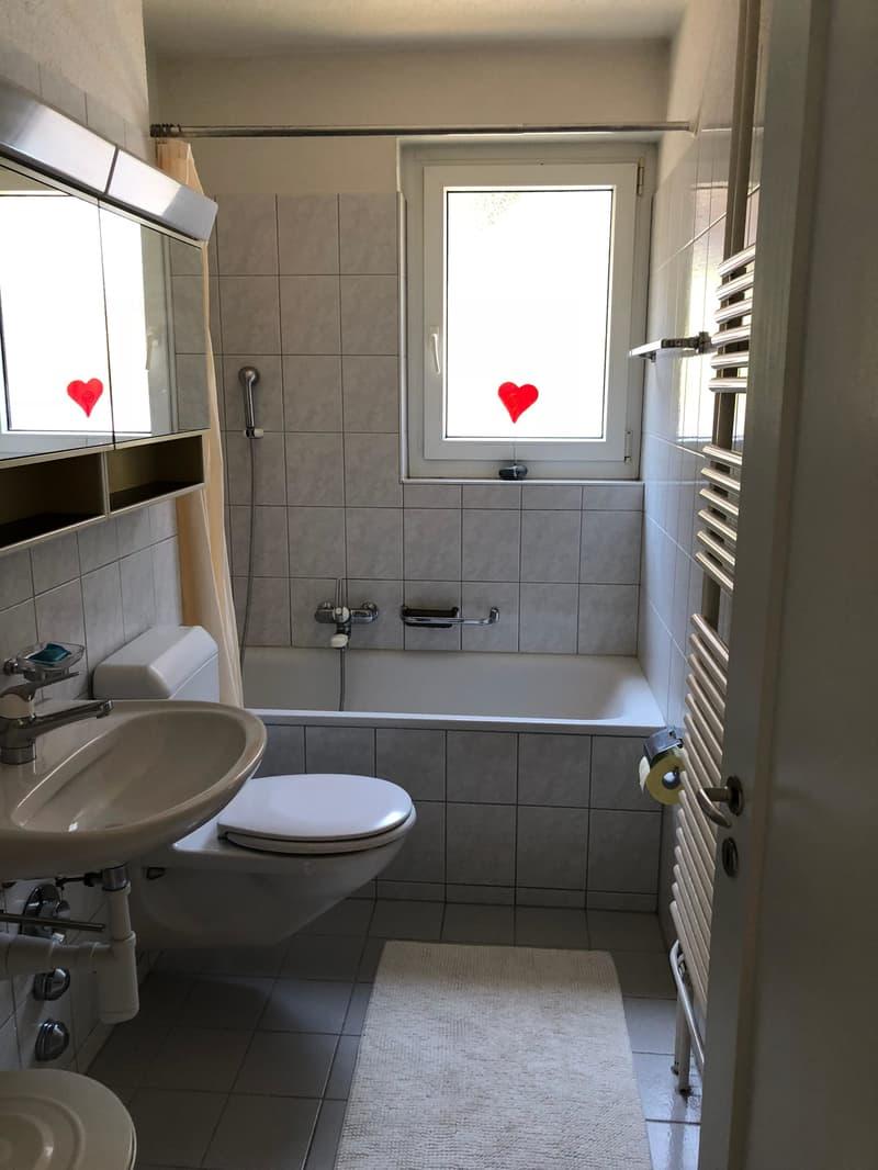 Möbliertes 2 Zimmer Apartment Stadt Winterthur