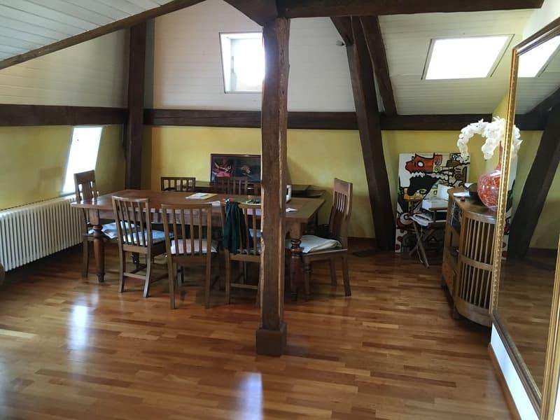 Splendide appartement dans les combles (3)