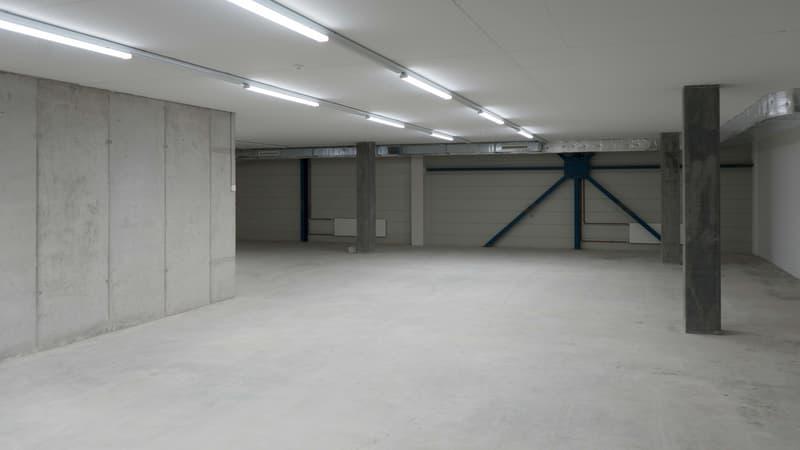 Lagerfläche 143 m² (Erdgeschoss) in Winterthur Töss direkt an der A1