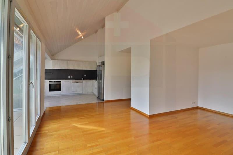 Superbe attique avec terrasse et 2 Pk