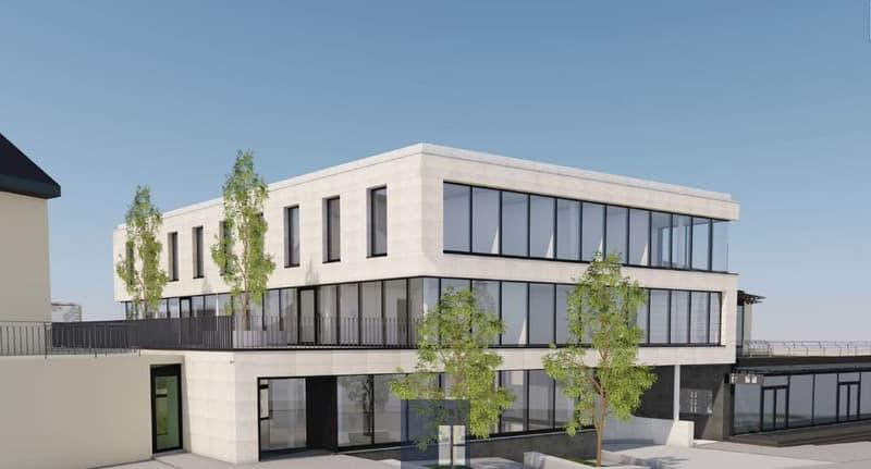 243 m2 - bureaux au 1er étage