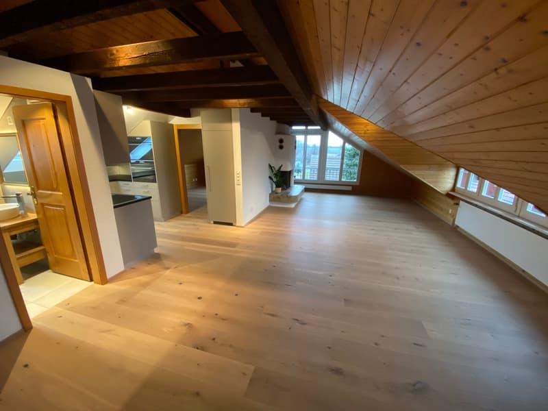 Neu renovierte 2.5 Zimmer Dachwohnung mit Balkon und Klimaanlage sucht neuen Mieter