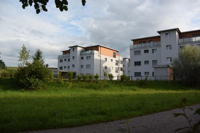 Beckenmoosstrasse 10 (Liegenschaft links)