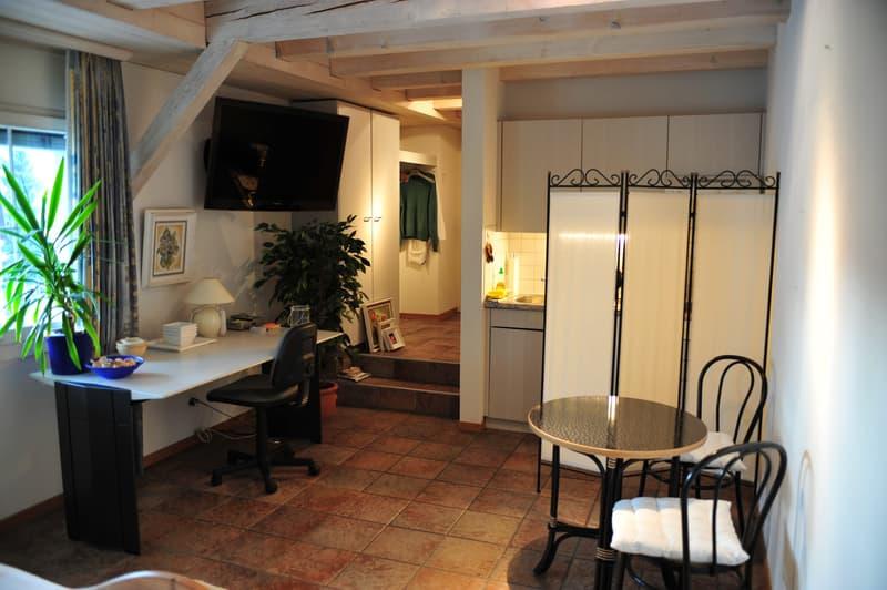 Apartement (Studio) in Islikon