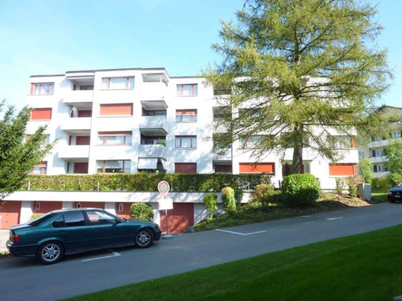 Ihr neues Zuhause am Sentenhübel! (2)