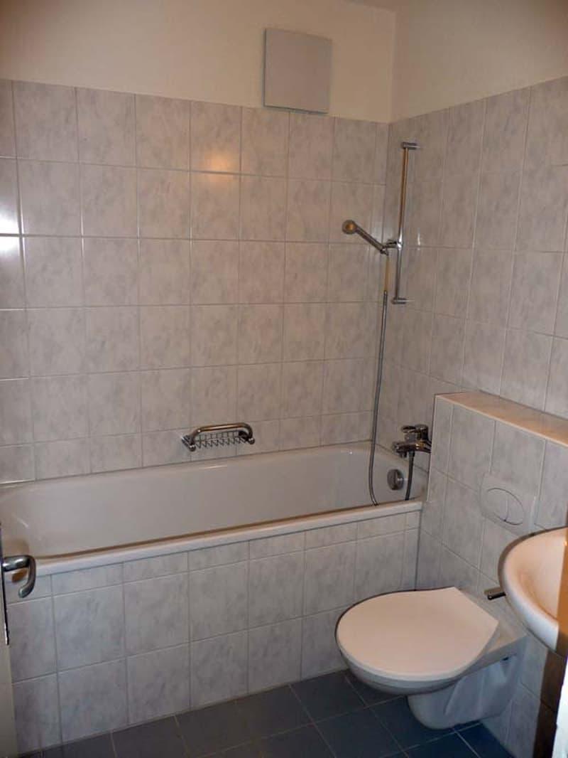Ideale Wohnung für Pendler (4)