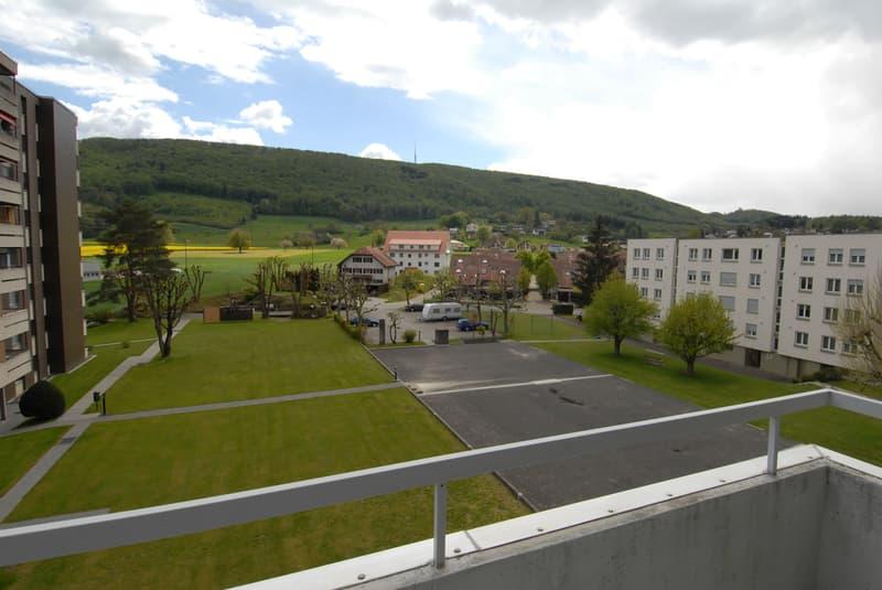 Moderne 3-Zimmerwohnung, zwischen Olten und Aarau