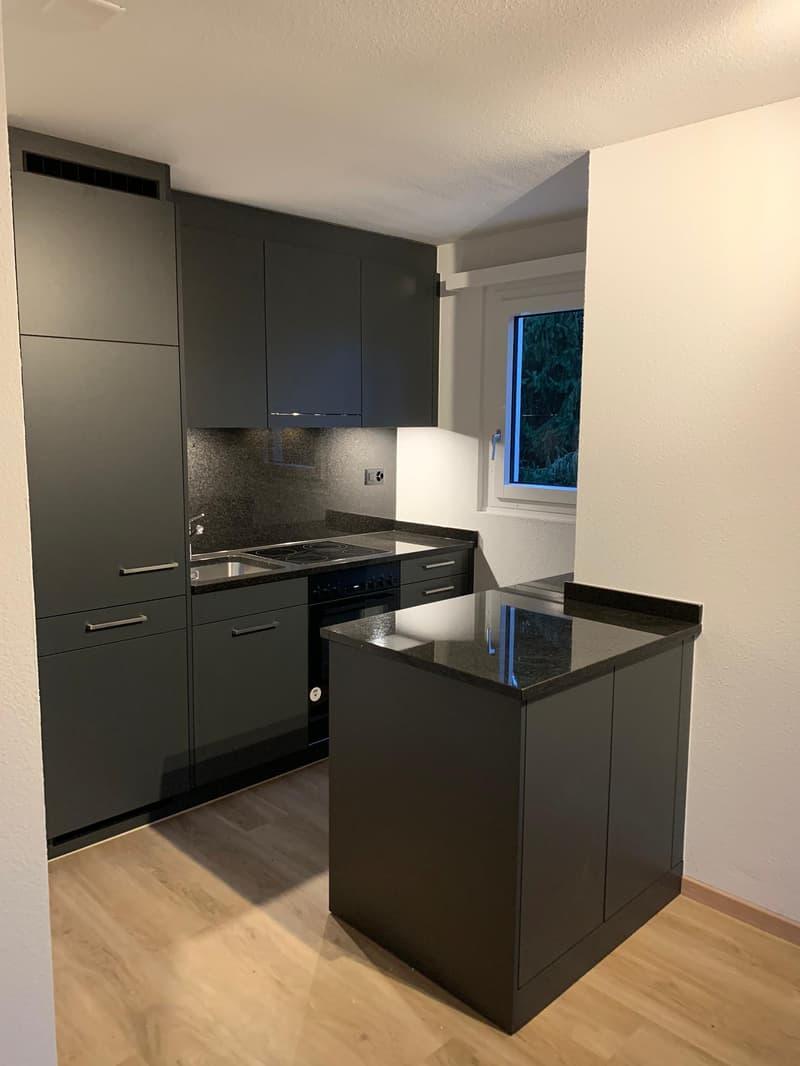 moderne, offene Küche