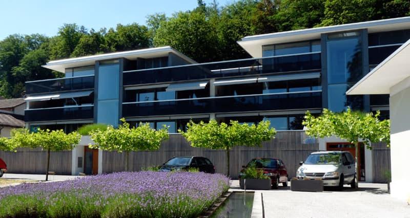 Zu vermieten 4.5 Zimmer Attika Wohnung im Löwenfeld
