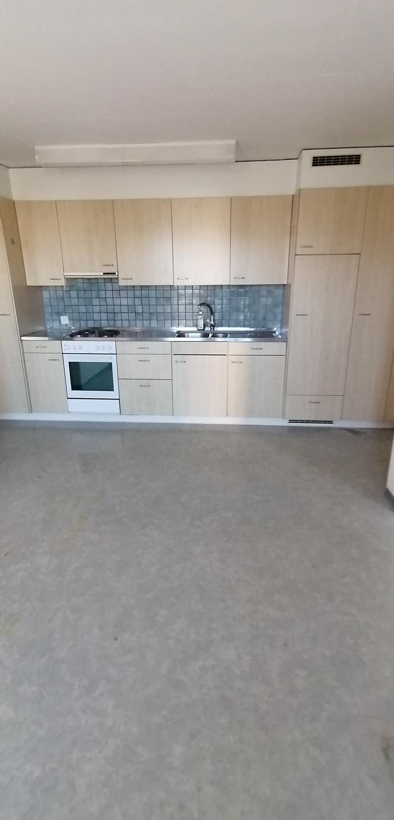 Neu renovierte moederne 3 Zimmer Wohnung (3)