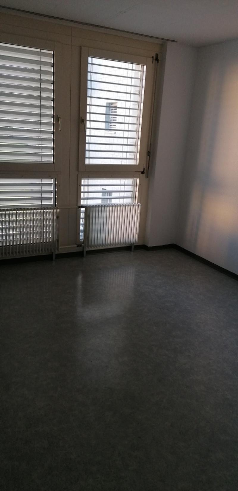Neu renovierte moederne 3 Zimmer Wohnung (4)