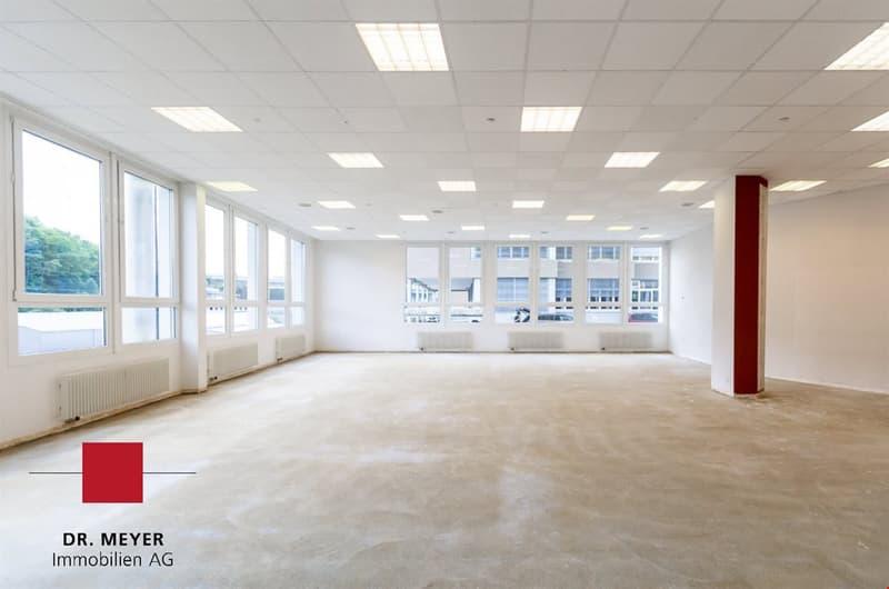 Hohe & tageslichtdurchflutete Büro-/Gewerbe-/Sporträume zu vermieten