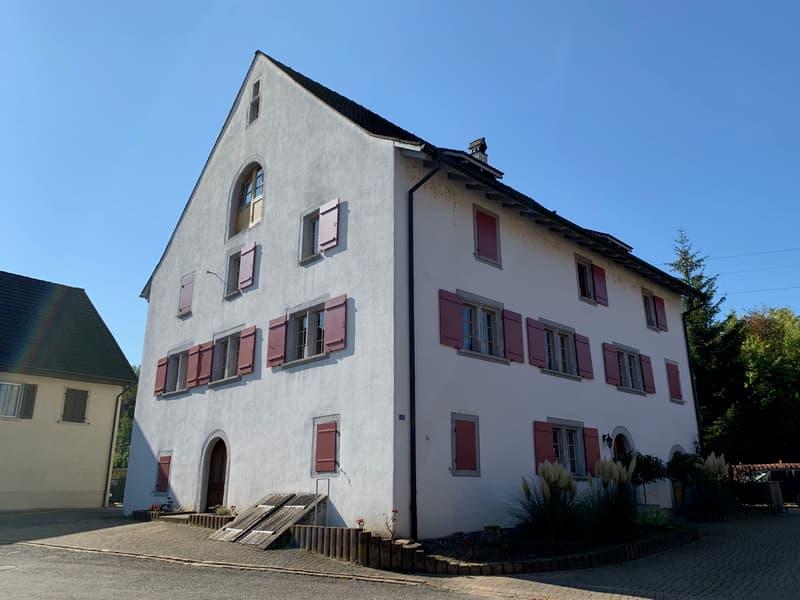 Grosse, charmante 3-Zi-Wohnung im ruhigen Dorfzentrum
