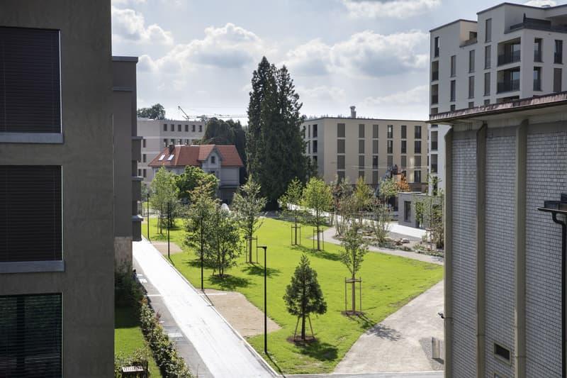 Zentrale 3.5-Zimmerwohnung im Aeschbachquartier (3)