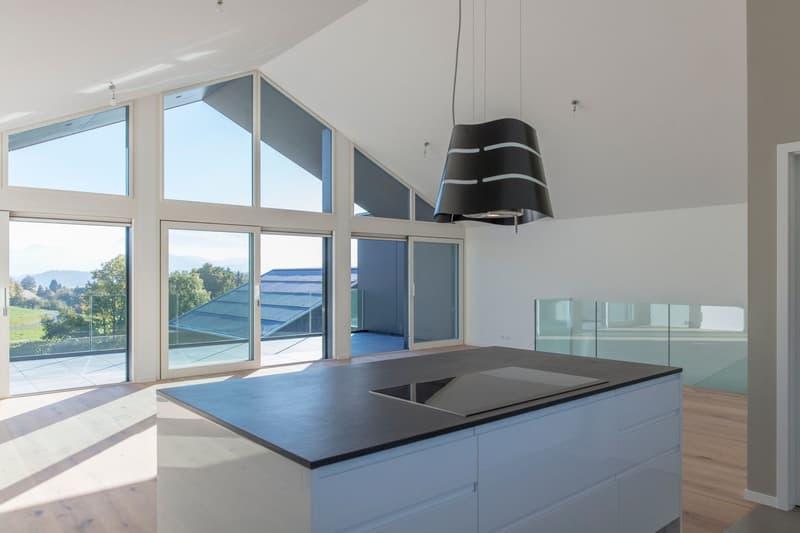 Magnifique villa 4,5 pièces à vendre  à Pont-la-Ville (1)