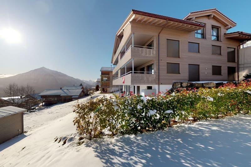3.5 Zimmerwohnung mit atemberaubender Aussicht auf See und Alpen