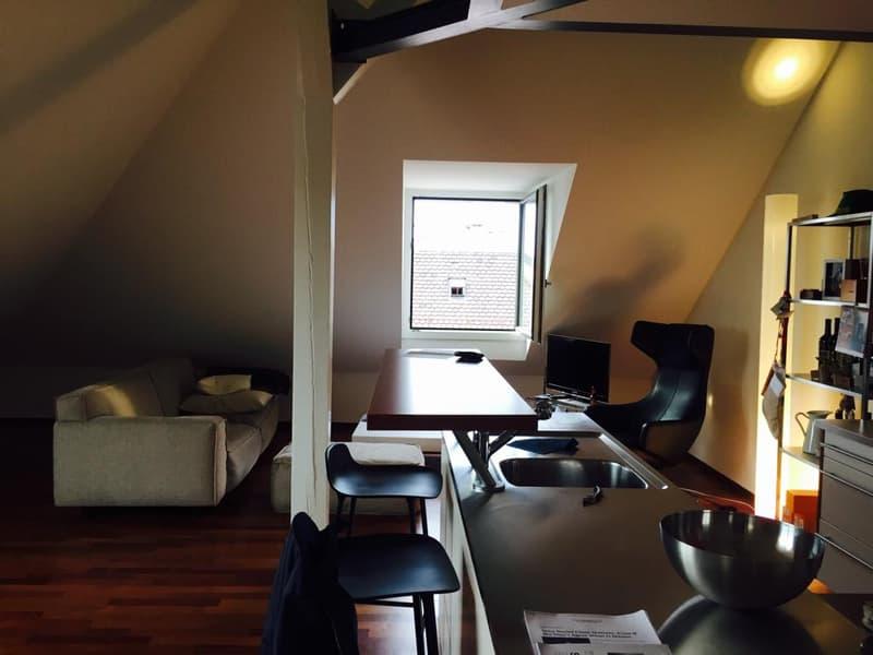 Duplex Eaux-Vives with great views