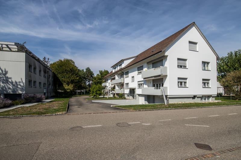 Schöne 2-Zimmer-Wohnung in kleinem Mehrfamilienhaus in Reinach