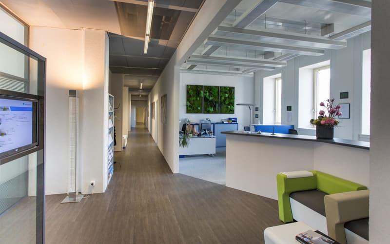 Belle surface de bureaux de 1'245m2