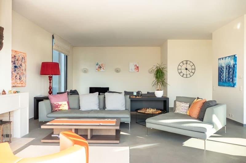Maison contemporaine avec une sublime vue lac à Cologny (4)