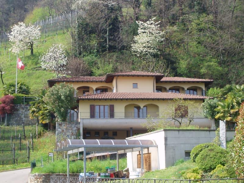 Luganese, affittasi importante villa / oppure parte di essa