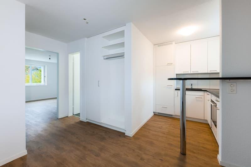 frisch modernisierte 2.5 Zimmerwohnung in ruhigem Quartier