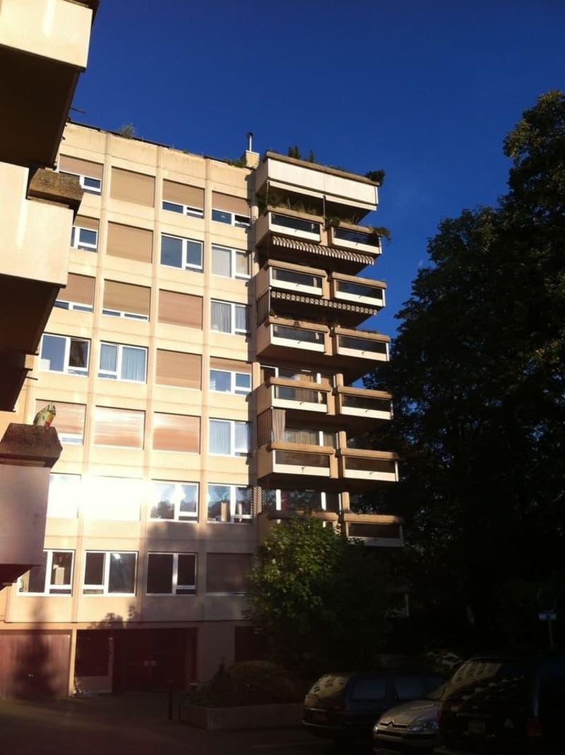 Superbe appartement au coeur du verdoyant quartier de Malagnou