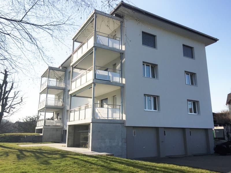 Schöne 4.5-Zimmerwohnung mit grosszügigem Balkon in Buchs LU