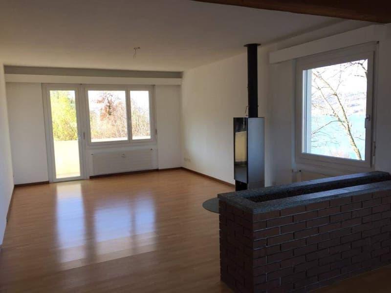 Wohnen wie im Einfamilienhaus! Grosse Dachwohnung mit Atelier im UG