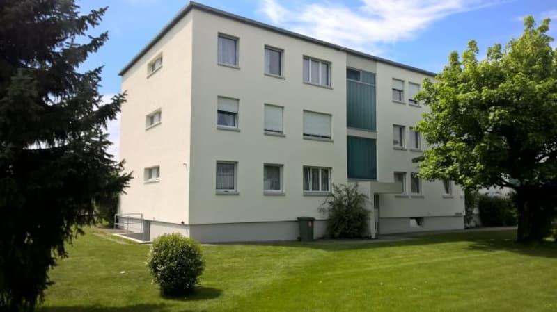 Günstige 3.0-Zimmer-Wohnung, an ruhiger Lage in Roggwil / Langenthal