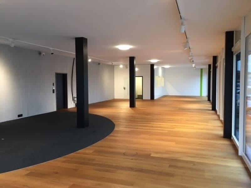 Exklusives Büro- oder Gewerbelokal im Erdgeschoss (207 m2) als Ladenlokal, Ausstellungsraum, Phyiotherapieraum oder Fitnesstudio